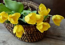 Pynt butikken flot op med kunstige blomster